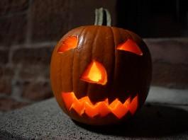 Halloween-Kürbis (Foto: Holger Knecht)