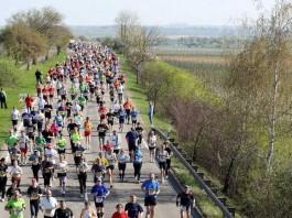 Marathon Deutsche Weinstraße (Archivbild, Quelle: Kreisverwaltung Bad Dürkheim)
