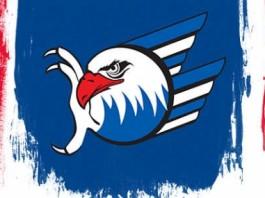 Logo Adler Mannheim