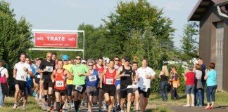 Läuferinnen und Läufer beim Gäulauf 2014 (Archivfoto) (Foto: Holger Knecht)