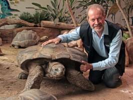 Ziemlich beste Freunde sind Zoo-Vize Dr. Clemens Becker und Riesenschildkröte Flunder. (Foto: Stadt Karlsruhe)