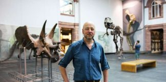 Museumsleiter Bernd Herkner vor Dinosaurier-Skeletten (Foto: Bernd Kammerer)
