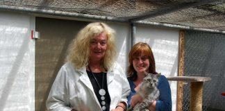 Spende Sparkasse Tierschutzverein 2016