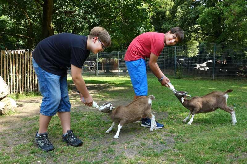 Wer kann da schon widerstehen? Noch sind die Ziegen auf die Flasche angewiesen – die beiden Paten Niclas und Eric übernehmen die Fütterung gleich vorbildlich.
