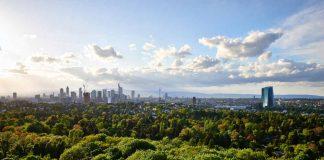 Stadtwald mit Skyline (Foto: Stefan Cop)