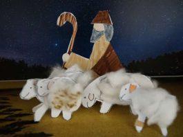 Wie Habakuk seine Schafe per WhatsApp hütet (Foto: Bistum Speyer)