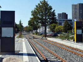 Mainzelbahn auf der Zielgeraden