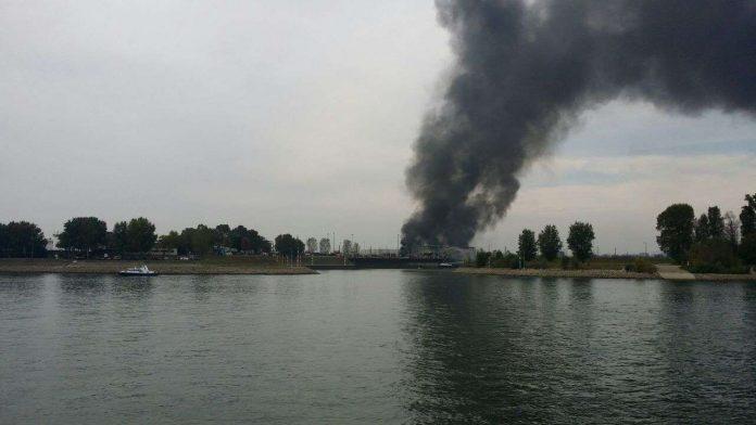 Brand auf dem BASF-Gelände im Landeshafen (Foto: Metropolnews)