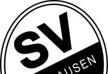 Logo (Foto: SV Sandhausen)