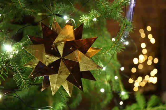 Weihnachtsstern (Foto: Holger Knecht)