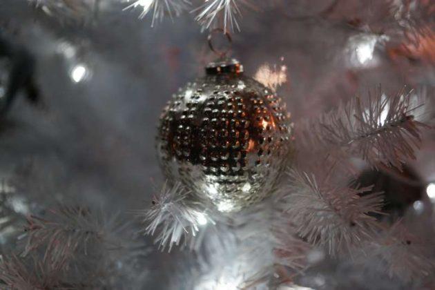Weihnachtliches Motiv (Foto: Holger Knecht)