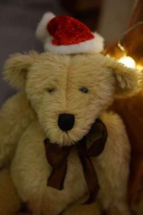 Teddybär (Foto: Holger Knecht)