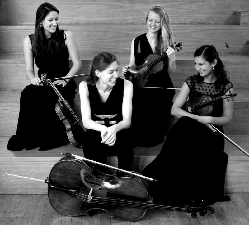 Das Tenero Quartett (Foto: Björn Hadem/HfMDK)