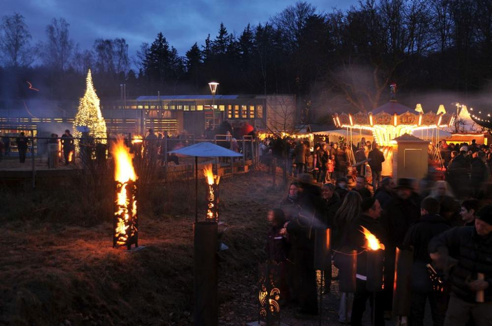 Vorweihnachtliche Stimmung im Johanniskreuzer Wald (Foto: Landesforsten RLP)