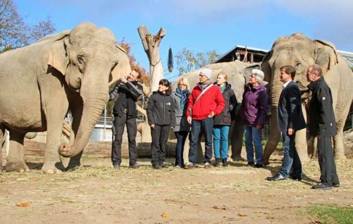 Tierschutzbeauftragte Dr. Jäger informierte sich über die Altersresidenz für Elefanten im Zoo Karlsruhe (Foto: Zoo Karlsruhe)