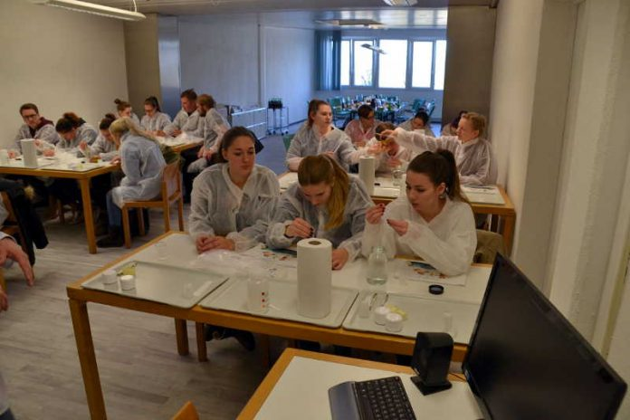 Nikolaus-von-Weiss-Schule-Klasse 2 B