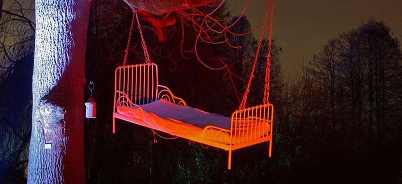 Winterlichter - Ein Bett im Baum (Foto: Stadtpark Mannheim)