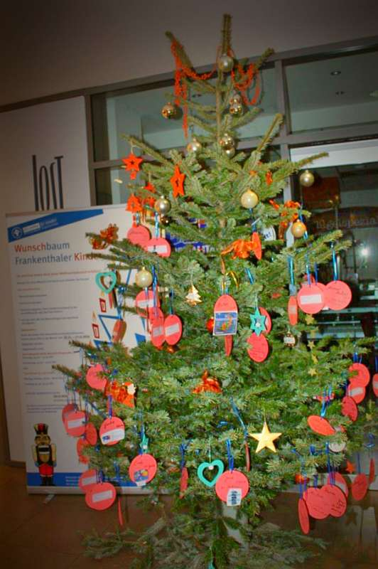 Der Wunschbaum (Foto: CDU Bürgerbüro Frankenthal)