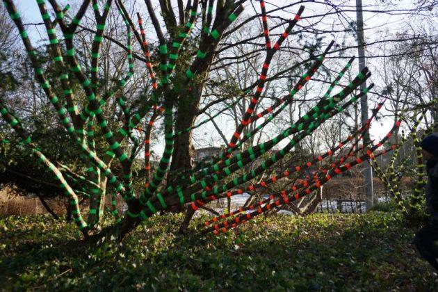 Bäume wurden mit Gaffaband umwickelt (Foto: Holger Knecht)