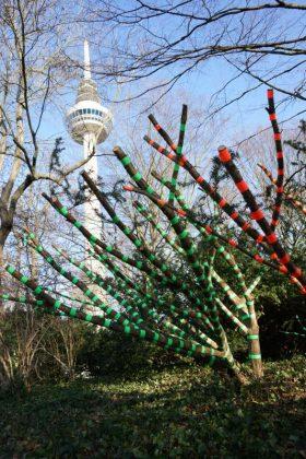 Gaffabäume, im Hintergrund der Fernmeldeturm (Foto: Holger Knecht)