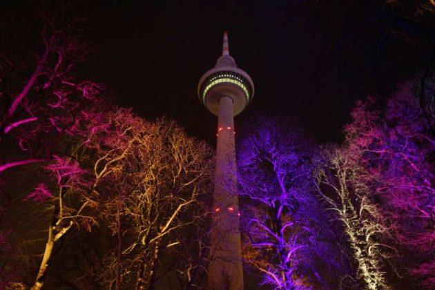 Der Mannheimer Fernmeldeturm, davor illuminierte Bäume (Foto: Holger Knecht)