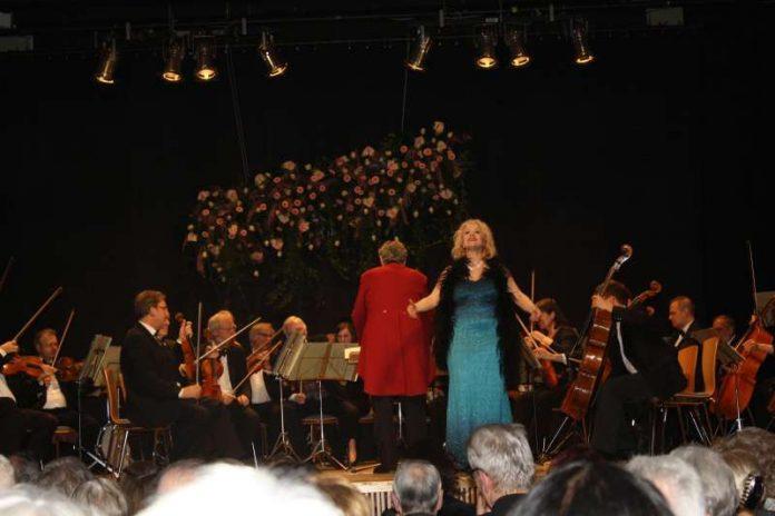 Neujahrskonzert des Johann-Strauß-Orchesters Wiesbaden (Foto: Kreisverwaltung)
