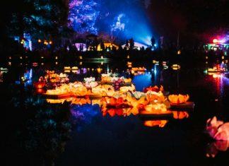 Birkengartenfestival (Foto: Stadt Lorsch)