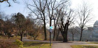 Schön, aber durch mehrere Vorfälle im vergangenen Jahr in die Diskussion geraten: Der Landauer Ostpark. Der Stadtvorstand hat jetzt ein Maßnahmenbündel vorgestellt, das den Park den Bürgerinnen und Bürgern zurückgeben soll. (Foto: Stadt Landau in der Pfalz)