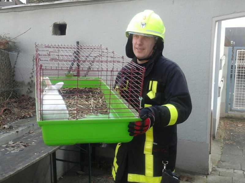 Ein Feuerwehrmann bringt das Kaninchen ins rettende Freie
