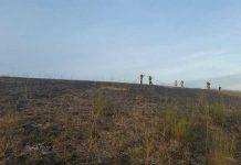 Flächenbrand Hirschhorn