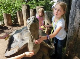 In den Osterferien bietet die Zooschule Heidelberg spannende Ferienprogramme für Schulkinder ab 6 Jahren. (Foto: Zooschule Heidelberg)