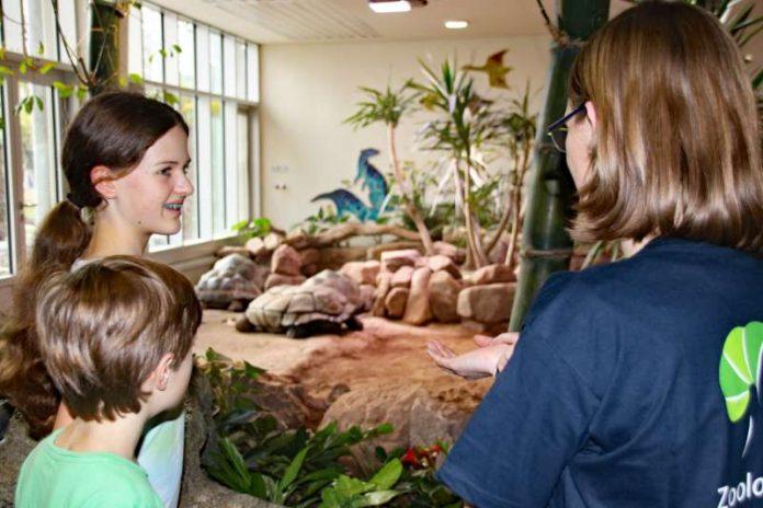 Viel Spaß und interessante Informationen verspricht das Ferienprogramm im Zoo Karlsruhe. (Foto: Zoologischer Stadtgarten Karlsruhe)