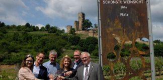 Blick auf die Burg Wachenheim (Foto: Pfalzwein e.V.)