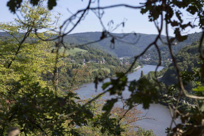 Heidelberg Geo Tag Der Natur In Heidelberg Die Artenvielfalt