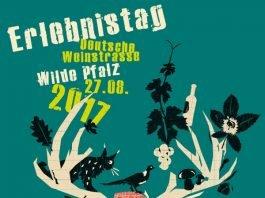 Veranstaltungsplakat (Quelle Pfalzwein e.V./Klemens Kluge)