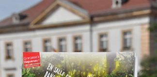 """Von Landau nach Haguenau und wieder zurück: Anlässlich des Festivals """"L'Humour des Notes"""" verkehrt zwischen den beiden Partnerstädten ein Shuttle-Bus. (Foto: Stadt Landau in der Pfalz)"""