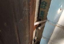 Eine Katze war zwischen einer Mauer und einer Holzverkleidung eingeklemmt (Foto: Feuerwehr Frankfurt)