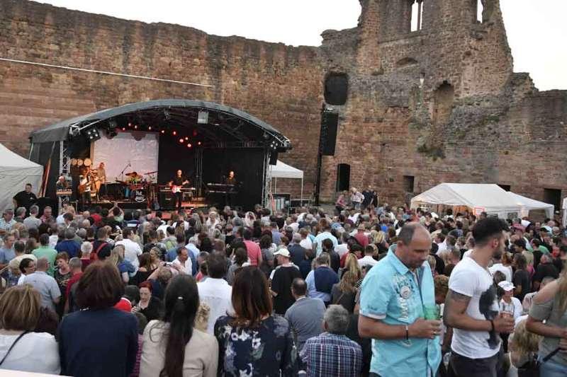 Publikum beim PHIL-Konzert (Foto: Helmut Dell)