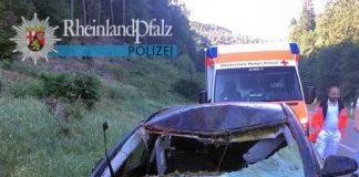 An dem Opel splitterte durch die Kollision mit dem Hirsch die Frontscheibe und der Fahrer wurde durch die Glassplitter verletzt.