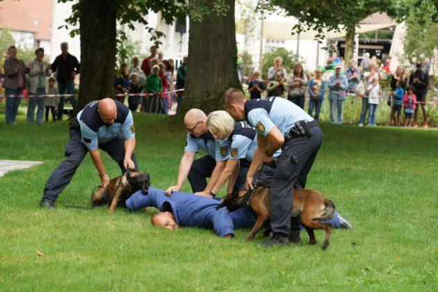 Vorführung der Hundeführer (Foto: Holger Knecht)