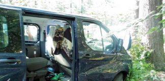 Das Fahrzeug blieb zwischen zwei Bäumen stecken. Es wurde so stark beschädigt, dass es nicht mehr weiterfahren konnte und abgeschleppt werden musste.