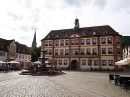 Rathaus Neustadt an der Weinstraße (Foto: Holger Knecht)
