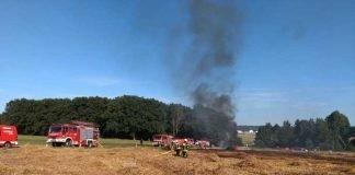 Feldbrand: Löscharbeiten der Feuerwehr