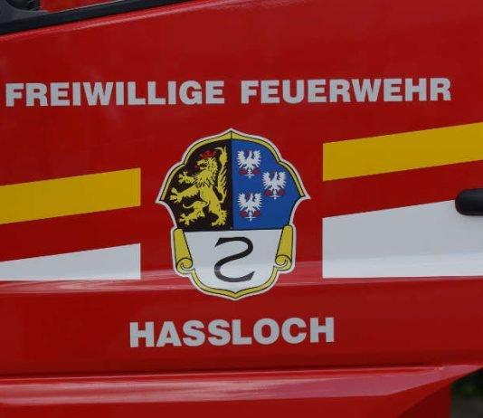 Symbolbild, Feuerwehr, Haßloch, Wappen