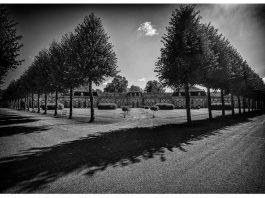 Schwarz-weiß-Foto von Roger Schäfer