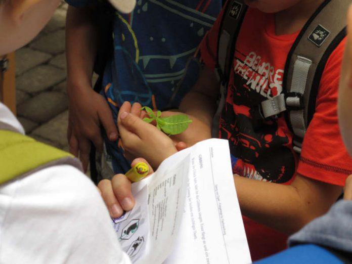 Kinder mit Wandelndem Blatt und Stempelpass beim Aktionstag für Biologische Vielfalt im Opelzoo. (Foto: Paul Dierkes)