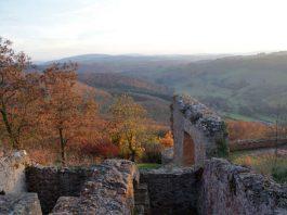 Moschellandsberg im Herbst (Foto: DTV)