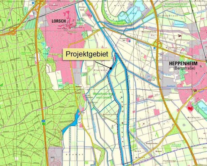 Die beiden bisherigen Weschnitz-Arme (schwarz umrandet) werden in der Mitte zu einem neuen, unbegradigten Bachlauf vereinigt; sie selbst werden nach dem Durchstich (unterer Bildrand) von der weiteren Wasserversorgung abgeschnitten. (Quelle: Regierungspräsidium Darmstadt)