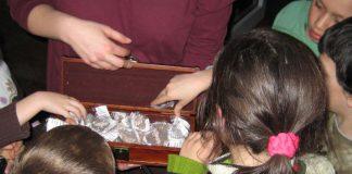 Der Schatz ist geborgen! (Foto: Pfalzmuseum für Naturkunde)