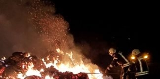 Ca. 100 Strohballen brannten (Foto: Feuerwehr Haßloch)